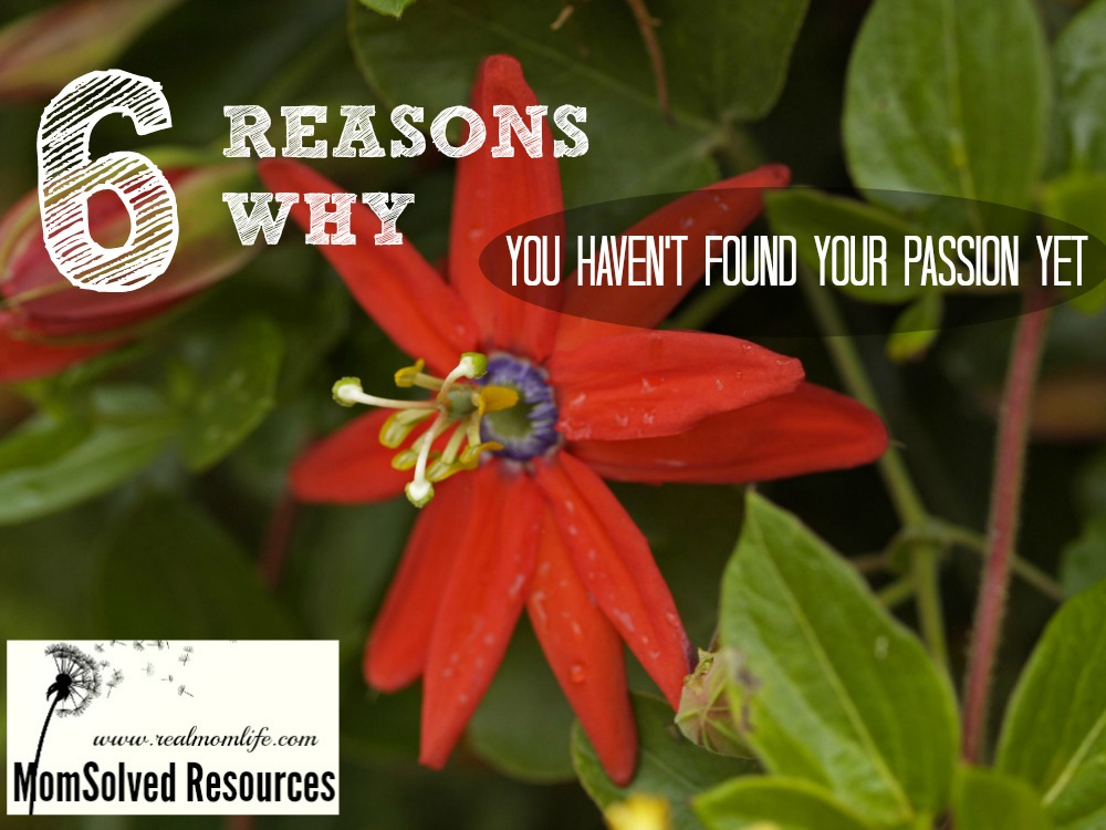 Top 6 Reasons Why You Haven't Found Your Passion