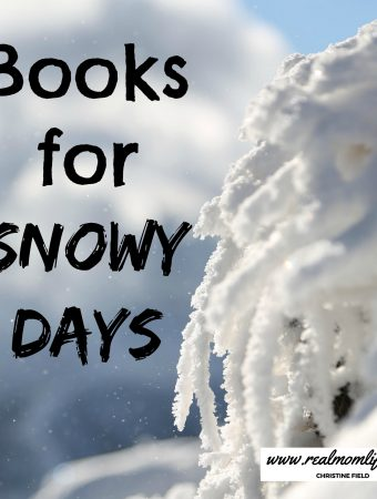 book list for snowy days