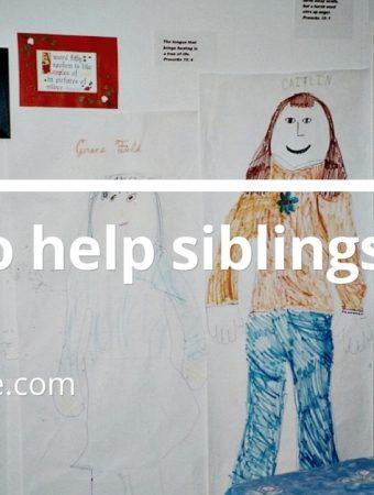 siblings get along