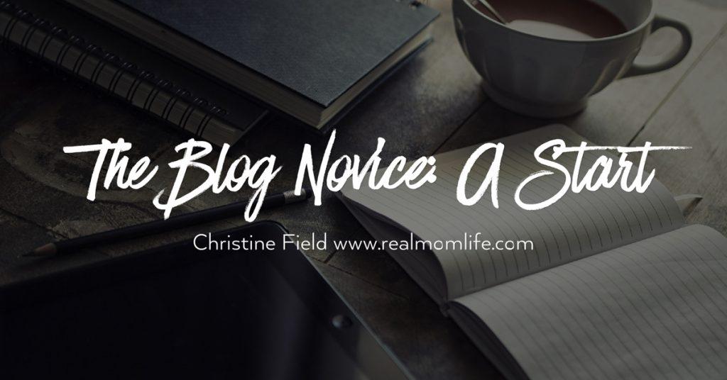 The Blog Novice: A Start