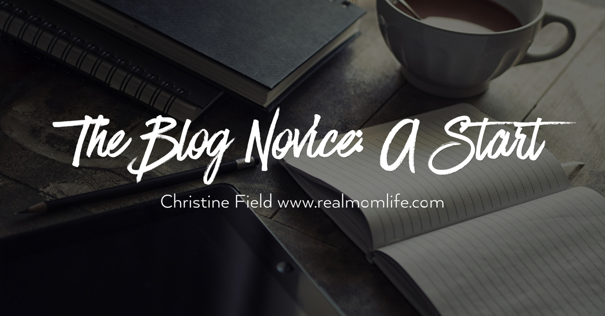 The Blog Novice: A Start