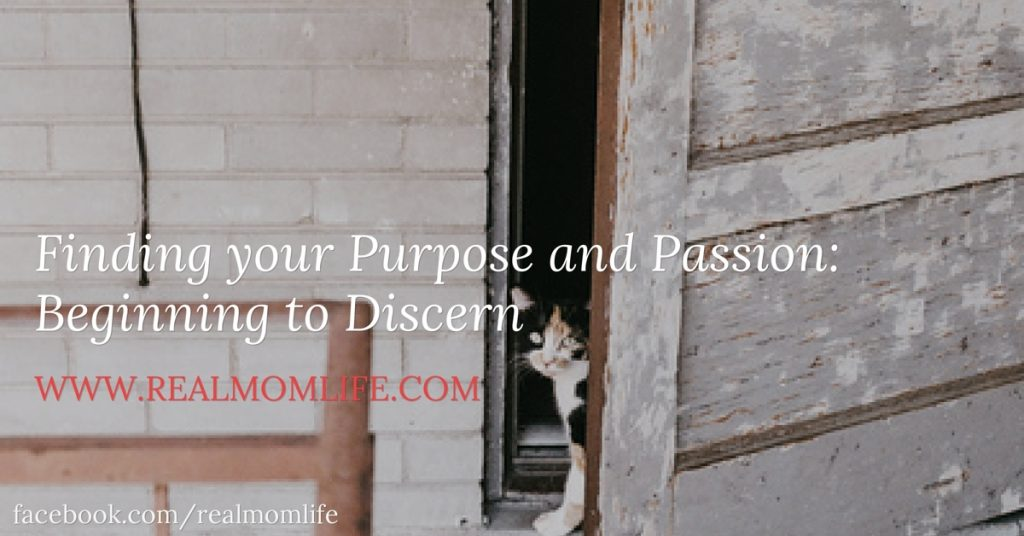 Finding your Purpose and Passion: Beginning to Discern