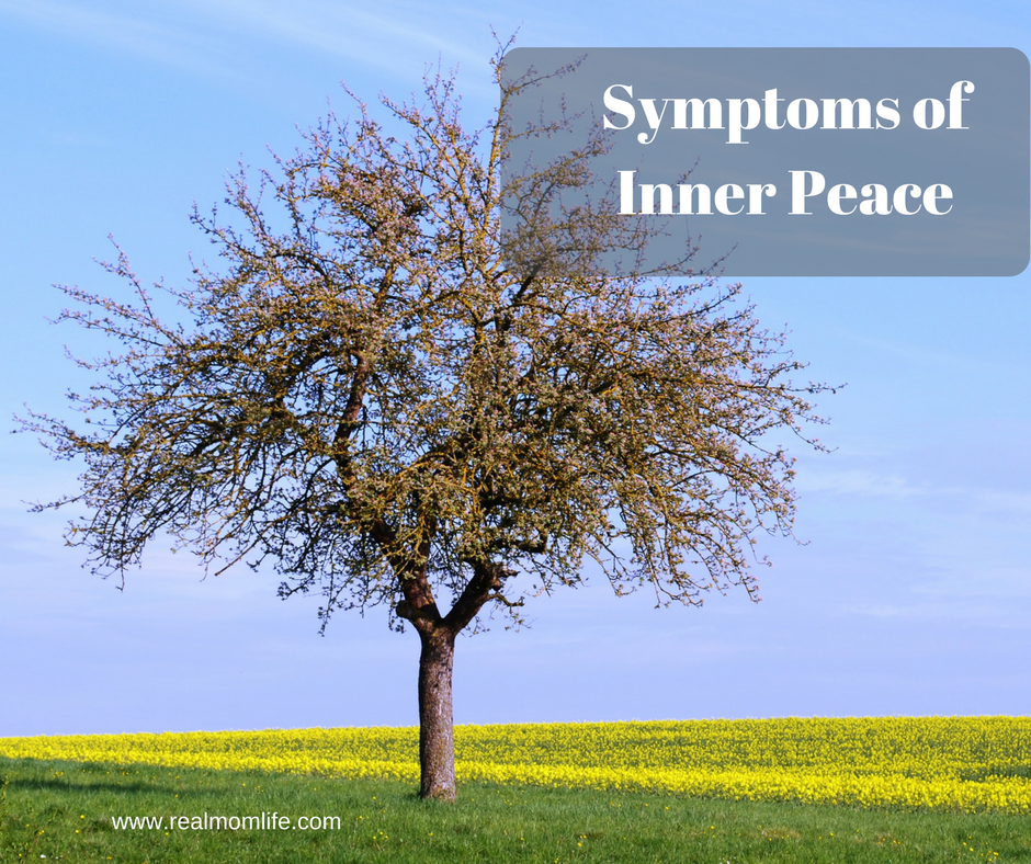 Symptoms of Inner Peace – by Saskia Davis